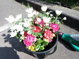 石川県 金沢市 お墓掃除 供花